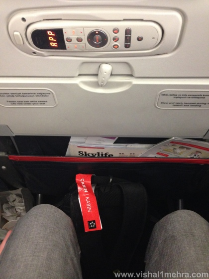 Turkish Airlines A321 - Economy Legroom